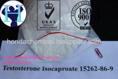Изопропиловый эфир тестостерона с чистотой 99% Изокапроат сырой сырой тестостерон изокапроат для бодибилдинга