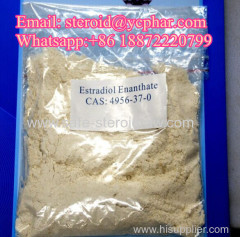 Female Hormone Powder Estradiol Enantate