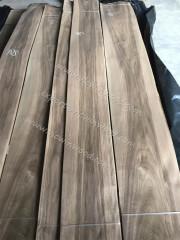 walnut sapwood veneer sheet
