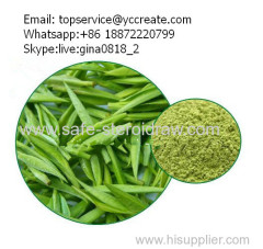 Natural Plant Extract Different Grade Green Tea P.E.