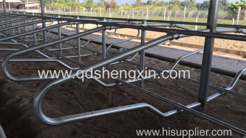 Cattle Free Stall For Farm Equipment