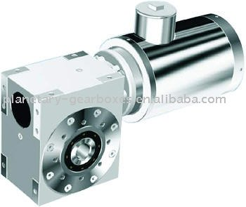 Worm Gear Reducer with Electric Motor
