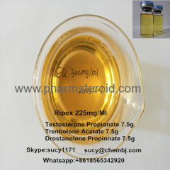 Injectable Semifinished Steroid Tri-Test 300 mg/ml For Bodybuilding