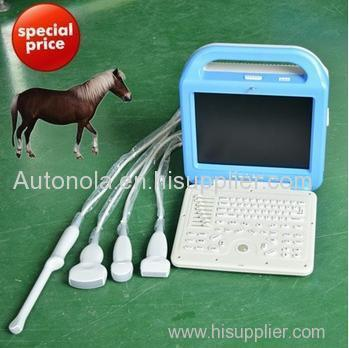 Laptop Animal Ultrasound Scanner Micro-Convex array probe