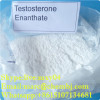 Testosterone Anabolic Steroid powder Testosterone Enanthate /Test E CAS No: 315-37-7for Body Building