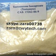 Testosterona Isocaproate testosterona Isocaproate pó branco em bruto para músculo ganho musculação.