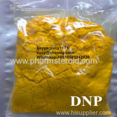 Pharmaceutical Raw Materials 2 4-Dinitrophenol DNP Weight Loss