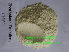 high purity Trenbolone enanthate powder for weight loss