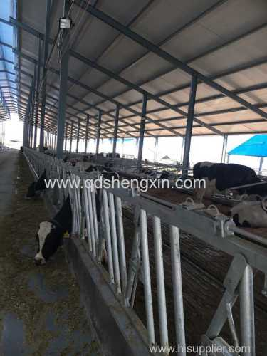 Hot dip galvanizing Cattle Headlocks