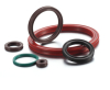 Custom Oil Seal/Rubber Oil Seal/China Oil Seal Supplier