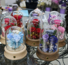 Best Gift Preserved Real Rose Flower in Glass Dome