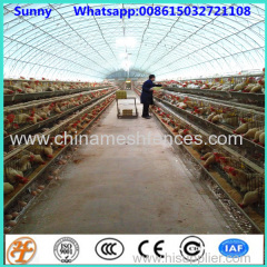 96 120 160 chcikens capacity layer chicken cages