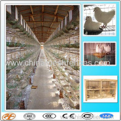 24 pigeons breeding cage with feeding accessories for sale