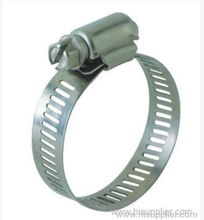 Hose Clamps can be used in place of T-Bolt clamps.