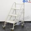 3 Step Mobile Book Ladder