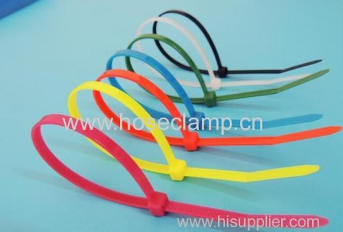Plastic Nylon cable ties