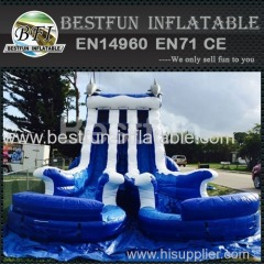 Giant double water slide with pool