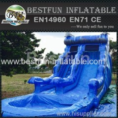 Blue dolphin water slide