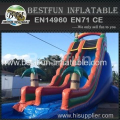 tropical extreme huge waterslide