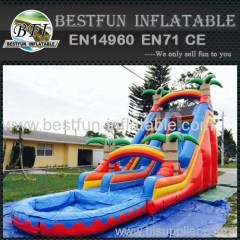 Inflatable Tropical Palm Slide with Pool