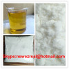 Female Hormone Steroid Powder Chlormadinone Acetate high purity 99%