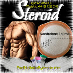 CAS: 26490-31-3 Nandrolone Laurate Powder for Body Building