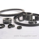 Double Lips Oil Seal Tc NBR Oil Seal Manufacturer