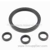 Resistance to High Temperature Sb Viton Oil Seal
