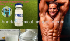 Stanozolol Injectable Steroid Gear Winstrol 50mg/ml Winstrol 50 Water-Based Oral Winny 50mg