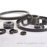 Ta Oil Seal in NBR FKM