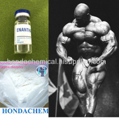 Painless Injectable Steroid Testosterone Enanthate 250mg/ml