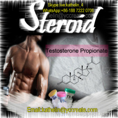 Muscles building Steroid male Hormone powder Testosterone Propionate CAS 57-85-2