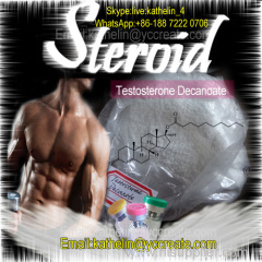 Testosterone Decanoate for Muscle Building / CAS 5721-91-5 / Steroid Hormones Powder