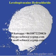Topical Pain Relief Local Anesthetic Raw White Powder Levobupivacaine Hydrochloride