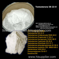 좋은 품질의 테스토스테론 / 테스트베이스 / Cas 58-22-0 / 99 % 순도 테스트베이스