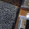 Medium Carbon Forging Steel Ball