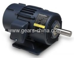 Hot Sale! 20% Off On Sale! YC Heavy Duty Single-phase Motor