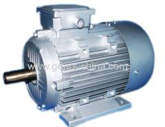 Motor eléctrico 25kw