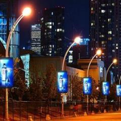 Outdoor LED Lighting Pole Display Low price