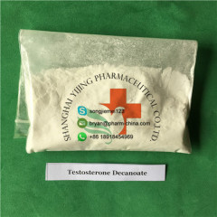 Testosterone Raw Powder Pharmaceutical Raw Materials Testosterone Decanoate For Muscle Growth