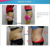 hot sell fat freeze cryolipolysis 3.5 inch Cryolipolysis Slimming Machine