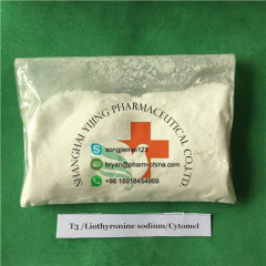 Weight Loss APIs Raw Powder Liothyronine Sodium T3 Cytomel CAS 55-06-1