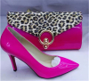 Ladies Shoes with matching leopard purse