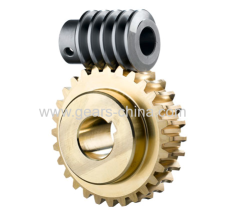 china manufacturer custom worm gears