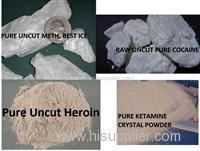 GLOBAL DRUG SHOP LIMITED