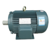 Y Series Cast Iron 370kW Three Phase Electric Motor With CSA