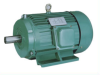 Y Series cast iron casing three phase Induction Motors