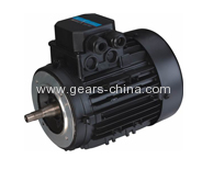 Y2 Series Cast Iron Housing Three Phase Induction Motor 30kW