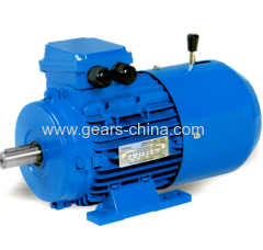china manufacturer YEJ series motor