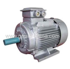 china supplier TYBZ synchronous motors
